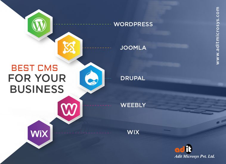 Best CMS For Your Business | AditMicrosys